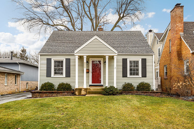 Downers Grove Single Family Home For Sale: 4124 Highland Avenue