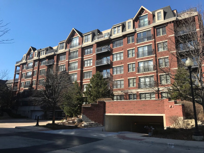 Wheaton Condo/Townhouse For Sale: 255 East Liberty Drive #203-2