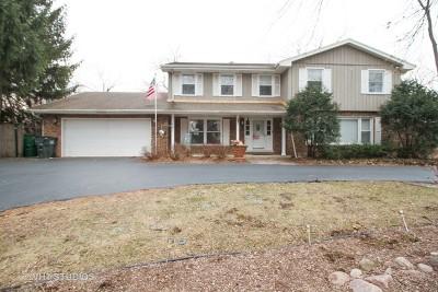 Homer Glen Single Family Home For Sale: 14036 South Cherokee Trail
