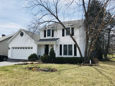 Lake Zurich Single Family Home For Sale: 1019 Holly Circle