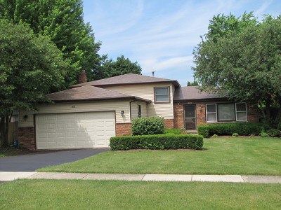 Batavia Single Family Home For Sale: 801 Manchester Avenue