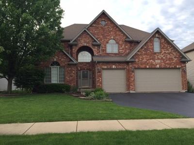 Naperville Single Family Home For Sale: 3911 Landsdown Avenue