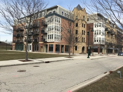Lemont Condo/Townhouse For Sale: 315 Front Street #1405