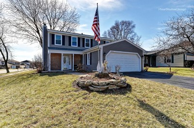 Roselle Single Family Home For Sale: 1111 West Bryn Mawr Avenue