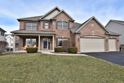 Elburn Single Family Home For Sale: 1122 Citizen Avenue