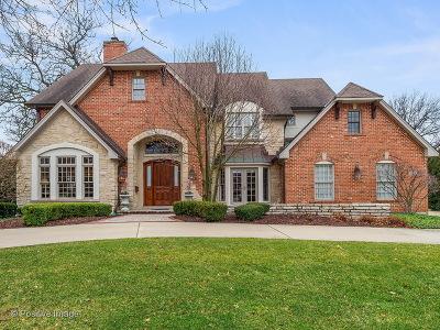 Hinsdale Single Family Home For Sale: 222 North Bruner Street
