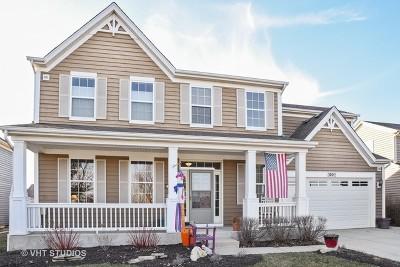 Elgin Single Family Home For Sale: 3062 Seekonk Avenue