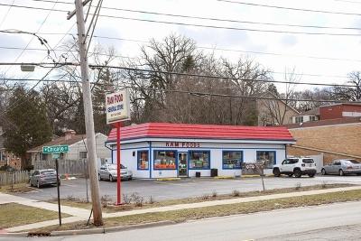 Elgin Commercial For Sale: 725 West Chicago Street #1