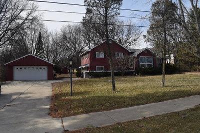 Naperville Single Family Home New: 5s320 Fender Road