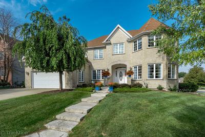 Batavia Single Family Home For Sale: 1007 Hodge Lane