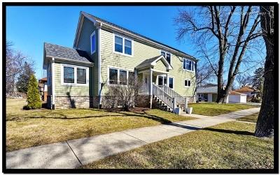 Elmhurst Single Family Home For Sale: 229 North Myrtle Avenue
