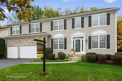 Bolingbrook Single Family Home For Sale: 801 Hartford Lane