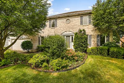 Naperville Single Family Home For Sale: 1108 Cordula Circle