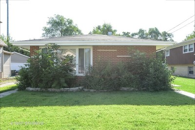 Dolton  Single Family Home For Sale: 14333 Chicago Road