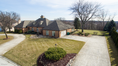 Orland Park Single Family Home For Sale: 8021 Salvatori Court