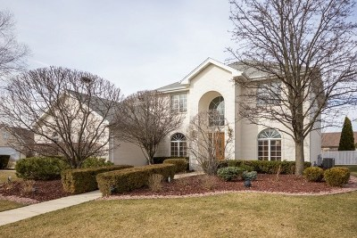 Orland Park Single Family Home For Sale: 10428 McKenna Court