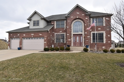 Plainfield Single Family Home For Sale: 16449 South Mueller Circle