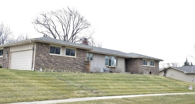 Schaumburg Single Family Home For Sale: 1233 Thornwood Drive