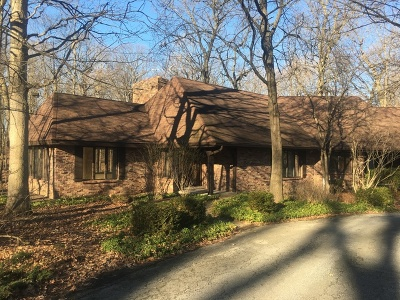 Crete Single Family Home For Sale: 23850 South Plum Valley Drive