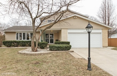 Mount Prospect Single Family Home For Sale: 1403 North Althea Lane