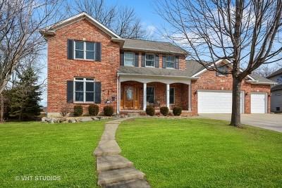 Batavia Single Family Home For Sale: 729 Ridgelawn Trail