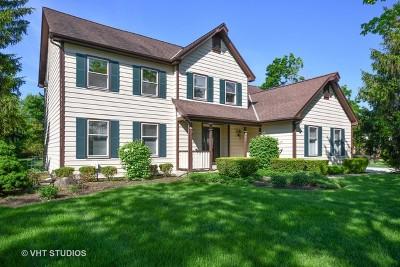 Glen Ellyn Single Family Home For Sale: 841 Abbey Drive