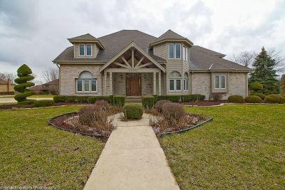 Homer Glen Single Family Home For Sale: 14154 Rado West Lane