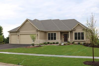 Geneva Single Family Home For Sale: 3420 Wild Prairie Lane