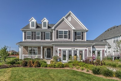 Hoffman Estates Single Family Home For Sale: 3462 Elsie Lot# 5 Lane