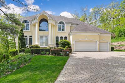Burr Ridge Single Family Home For Sale: 181 Ashton Drive