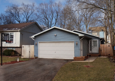 Lake Zurich Single Family Home For Sale: 23752 North Overhill Drive