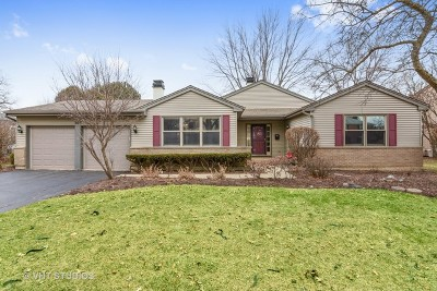 Palatine Single Family Home For Sale: 928 West Partridge Drive