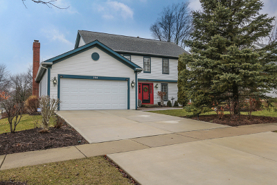 Palatine Single Family Home For Sale: 204 North Crescent Avenue