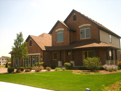 Lockport Single Family Home For Sale: 16405 West Deerwood Drive