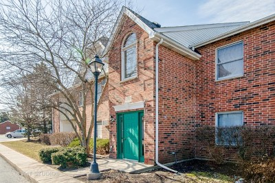 Lake In The Hills Condo/Townhouse For Sale: 1341 Cunat Court #1B
