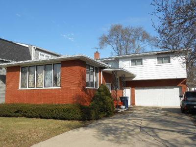 Evergreen Park Single Family Home For Sale: 10213 South Homan Avenue