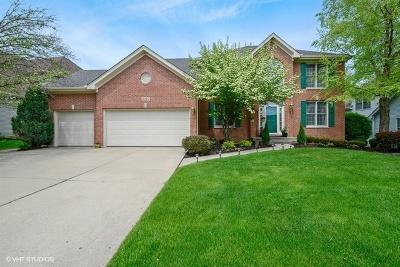 Burnham Point Single Family Home For Sale: 2119 Sisters Avenue