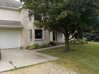 Ogle County Single Family Home For Sale: 4661 North Marrill Road