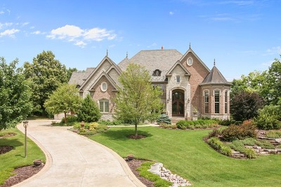 Mc Henry County Single Family Home For Sale: 1051 Oakmont Court