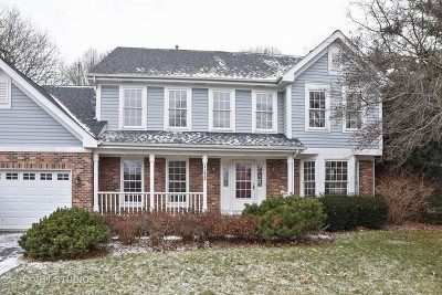 Elgin Single Family Home For Sale: 1132 Deep Woods Court
