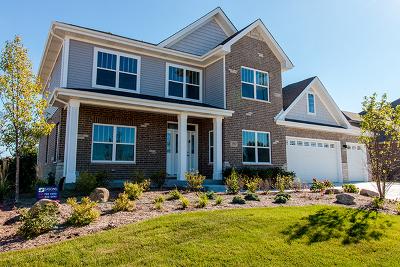 Glen Ellyn Single Family Home For Sale: 436 St Charles Road
