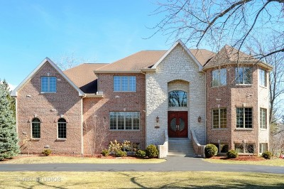 Lincolnshire Single Family Home For Sale: 23179 North Apple Hill Lane