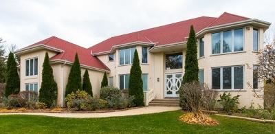 Palos Park Single Family Home For Sale: 12525 South Windsor Drive
