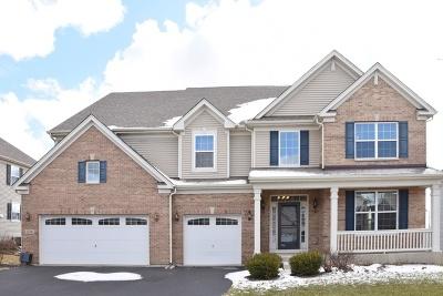Huntley Single Family Home For Sale: 12341 Glazier Street
