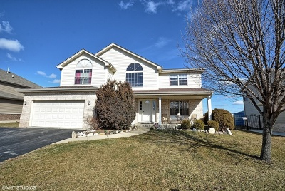 Lockport Single Family Home For Sale: 16250 Lakeside Drive