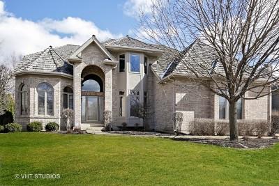 South Elgin Single Family Home For Sale: 561 Sterling Lane