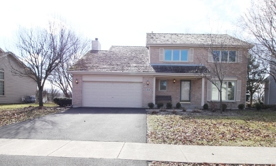 Bolingbrook Single Family Home Contingent: 1364 Waterside Drive