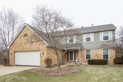Palatine Single Family Home For Sale: 1704 West Arbor Court