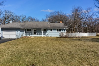 Mokena Single Family Home For Sale: 12726 West Regan Trail