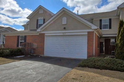 McHenry Condo/Townhouse For Sale: 427 Legend Lane